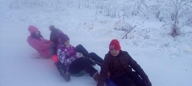 Экскурсия в зимний лес.